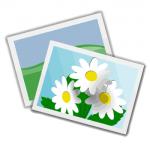 大量のプリント写真のスキャン スキャニングサービスの利用が現実的