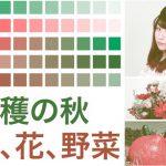 2色印刷のIllustratorドキュメントの印刷結果の確認方法 CMYKで作成した場合