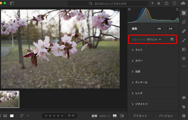 カメラプロファイルを操作するパネル